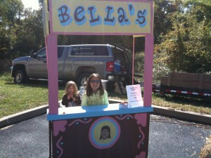My Lemonade/Apple Cider Stand